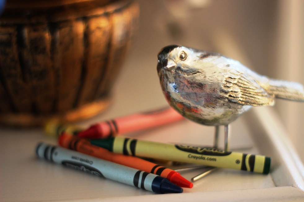 Bird and crayons